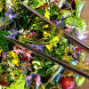 Thumbnail image for Flower Salad