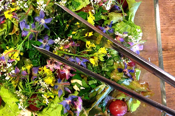 Post image for Flower Salad